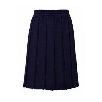 Girls Navy Blue Box Pleated Skirt