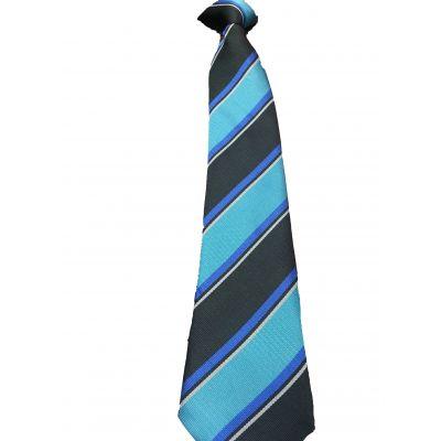 St Catherine's Academy Tie